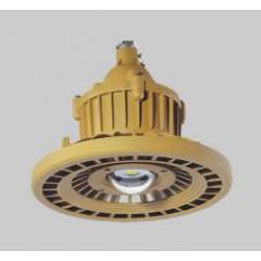 人民RDB98-8640防爆免维护节能灯(LED)