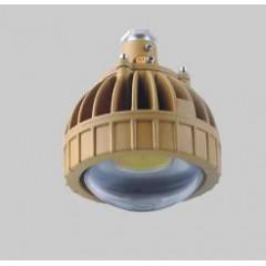 人民RDB98-8650防爆免维护节能灯(LED)