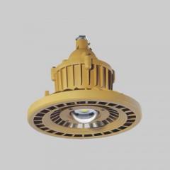 人民 RDB98-8640防爆免维护节能灯(LED)
