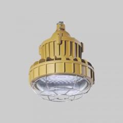 人民 RDB98-8626防爆免维护节能灯(LED)